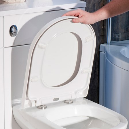 large d shaped toilet seat. View Larger Image  Gallery Vellamo D Shaped Soft Close Toilet Seat With Quick Release Hinges